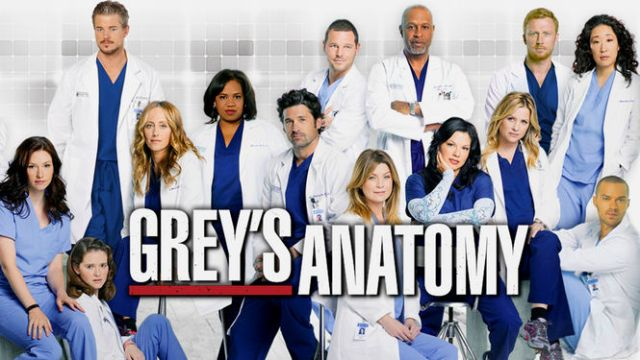 Grey's Anatomy 8 temporada